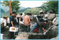 浄水器の水・RO水(水道加工水)